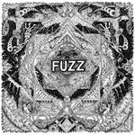 fuzz_II.png