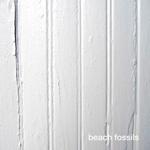 beach_fossils_st_cs.png