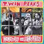 twin_peaks_down.png