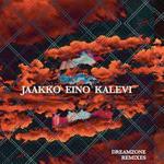 jaakko_dreamzone_rmx.png