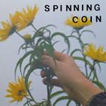 spinningcoin_raining.png
