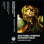 AnatomiaHumanaDesmontable.png