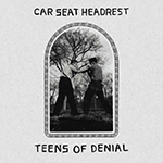 car_seat_headrest_teens_of.png