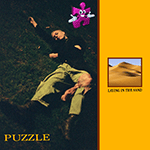 puzzle_laying_in_the_sand.png