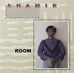 shamir_room.png