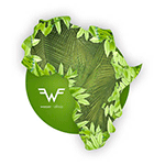 weezer_africa.png