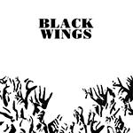 black_wings.png