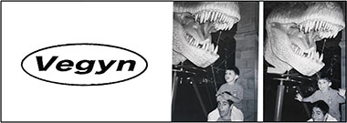 vegyn-banner