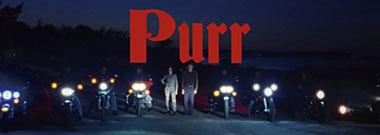 purr-banner