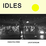 IDLES-LIVE-Beautiful Thing2174.png