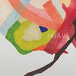 Nerija-BLUME.png