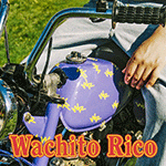 boy_pablo_WACHITO_RICO.png