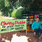 cherry_pickles_juice_thats_worth_the_squeeze.png