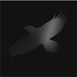 odins_raven_magic_sigur_ros.png