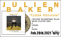 JULIENBAKER-POP-BANNER.jpg