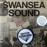 swansea_sound_formosa_punk.png