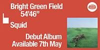 squid-brightgreen field-banner-1.jpg