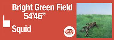 squid-brightgreenfield-banner-2