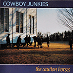 cobowy_junkies_caution_horses.png