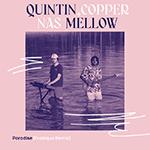 quintin_copper_nas_mellow_paradise_erobique_remix.png